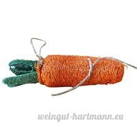 Roblue Jouets de Morsure pour Lapin Chinchilla Cochon d'Inde Hamster Ecureuil Animaux de Compagne Forme de Carotte Bones Coloré Nettoyage des Dents en Loofah - B07DHHL533
