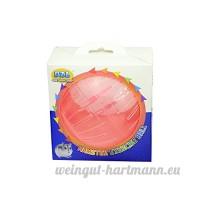 DI ZE LIN PET HOME S.L DZL® boule plastique pour hamster ejecicios boule deux tailles - B07CP7MDGJ