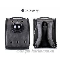 Transport Chat Sur Roulettes  Portable Roulant Bagages Respirant Boîte De Transport Amovible - B07CV97RXH